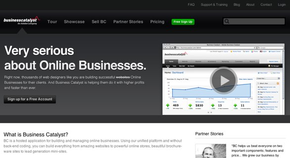 Business Catalyst website