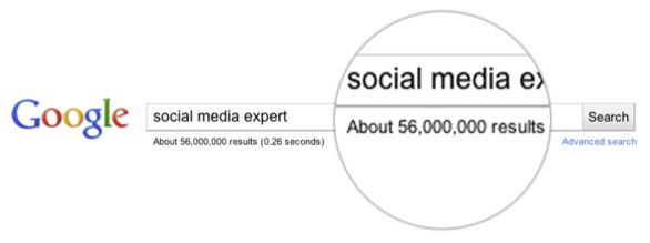 Google search for social media expert. 56 million results returned
