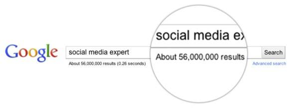 Google search for social media expert. 56 million results returned